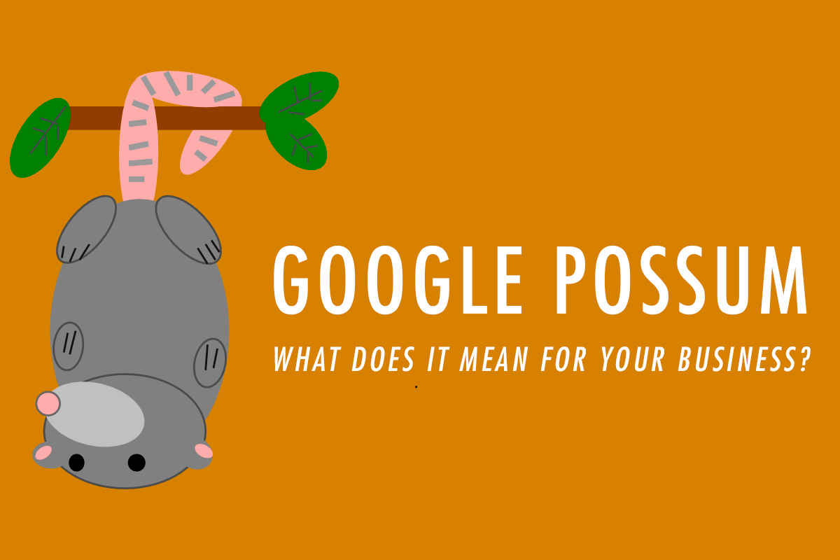 google-possum-banner