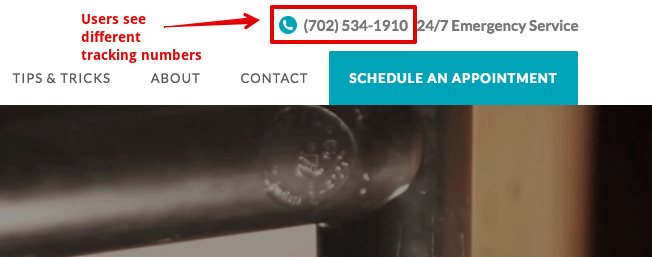 Call Tracking Example 3