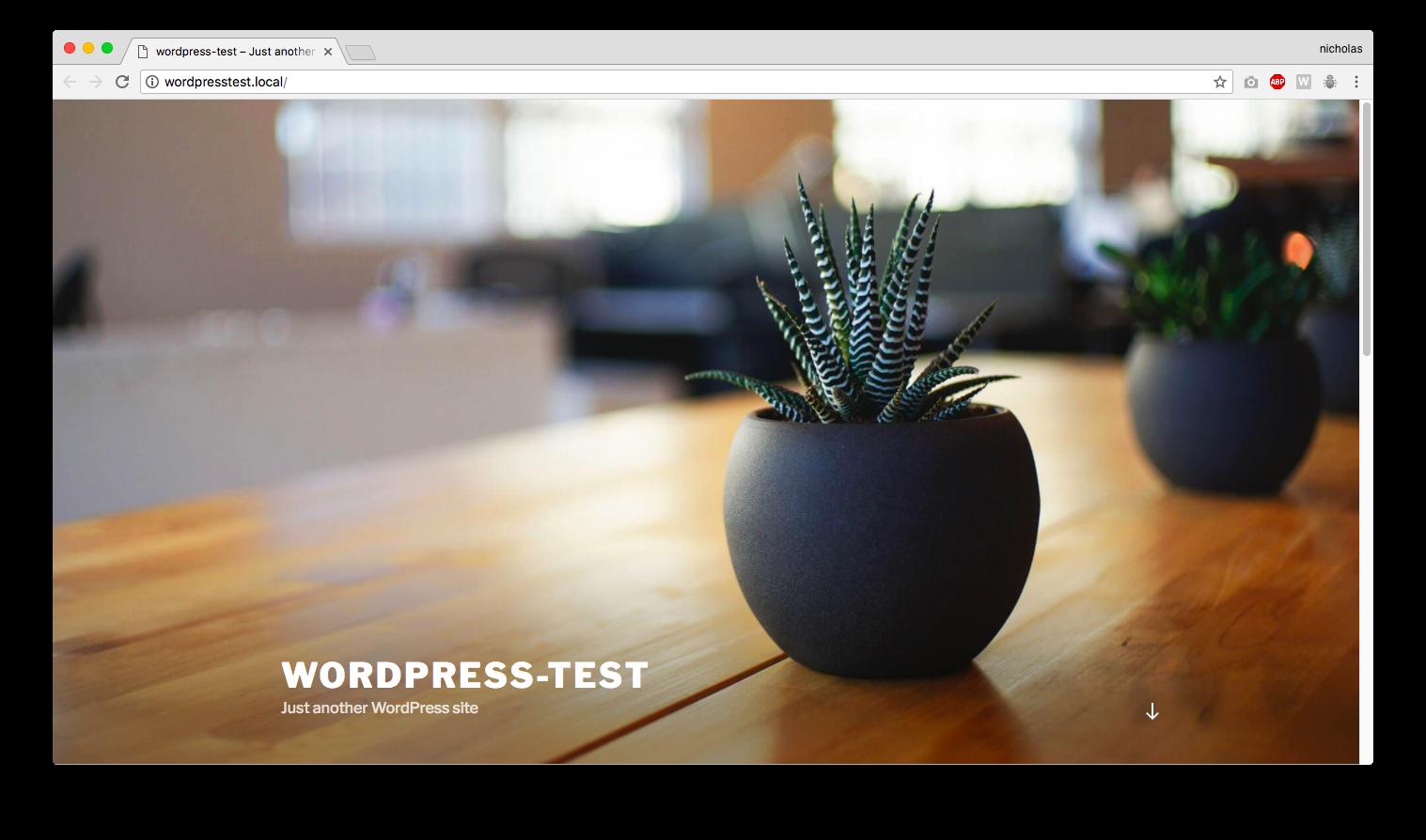 wordpress test